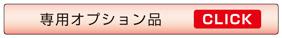 Link_option3